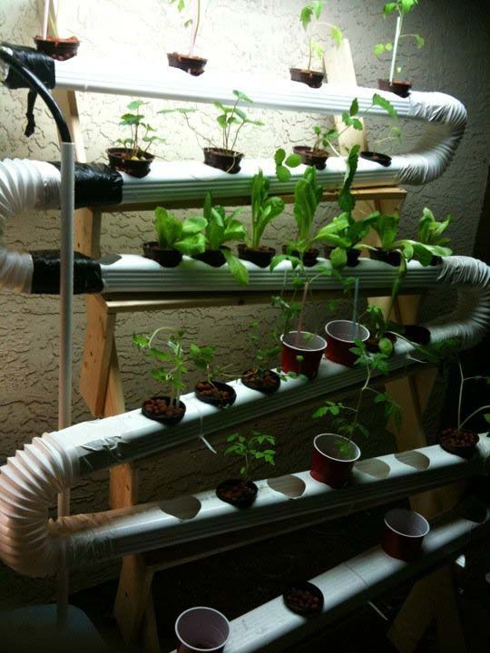 Hydroponic Diy System Indoor Vegetable Gardening