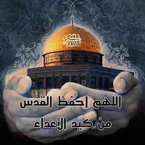 عاشت فلسطين حرة عربية و ستبقى فلسطين حرة عربية اللهم اضرب الظالمين بالظلمين Anime Wallpaper Live Taj Mahal Relatable