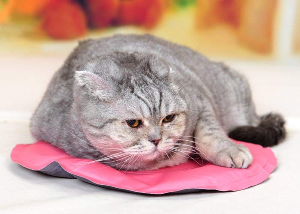 Marupet Pressure Activated Cooling Pet Bed Self Cooling Pet Pad