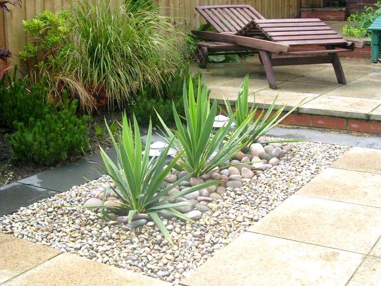 Sculptural planting modern garden landscaping planting ...