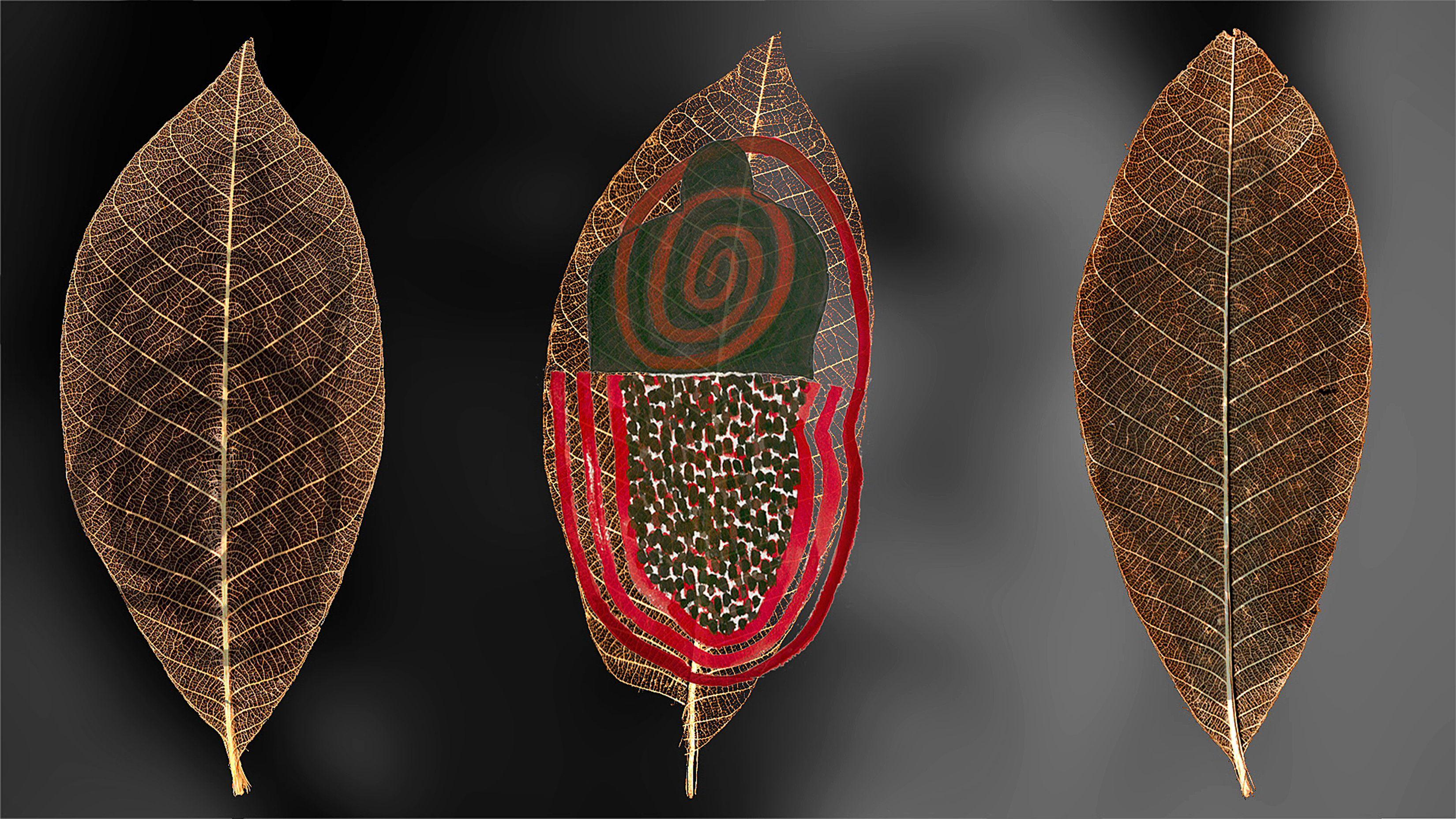 Juan sanchezjpg 33001856 shaman woman women event