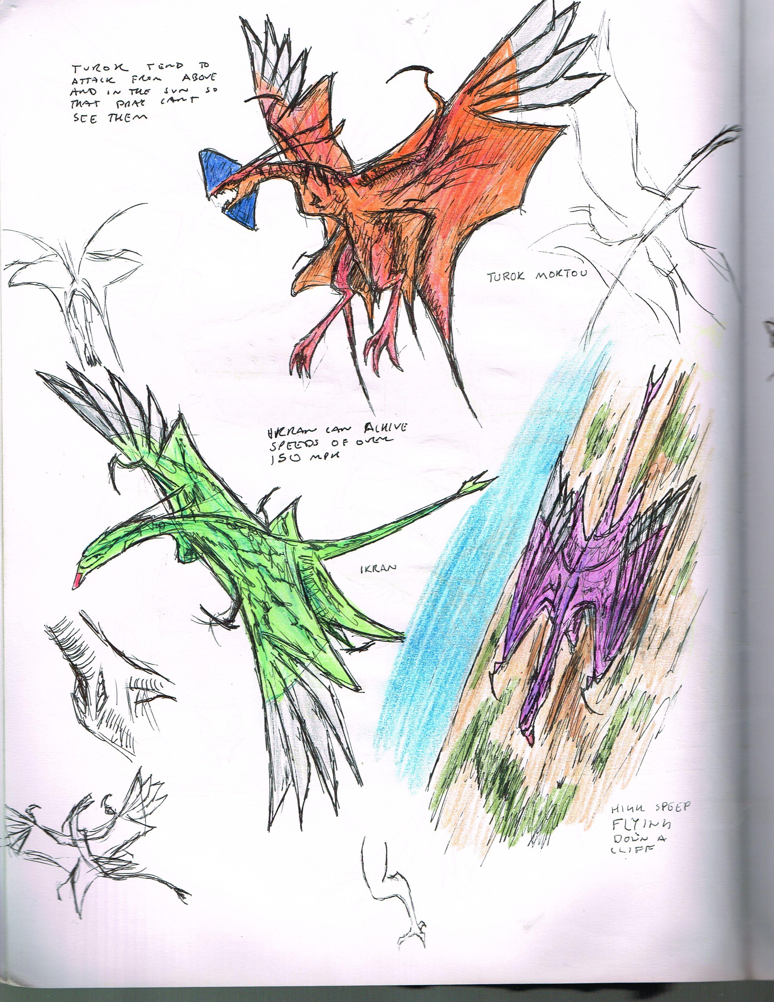 Pandora Aviaries Study