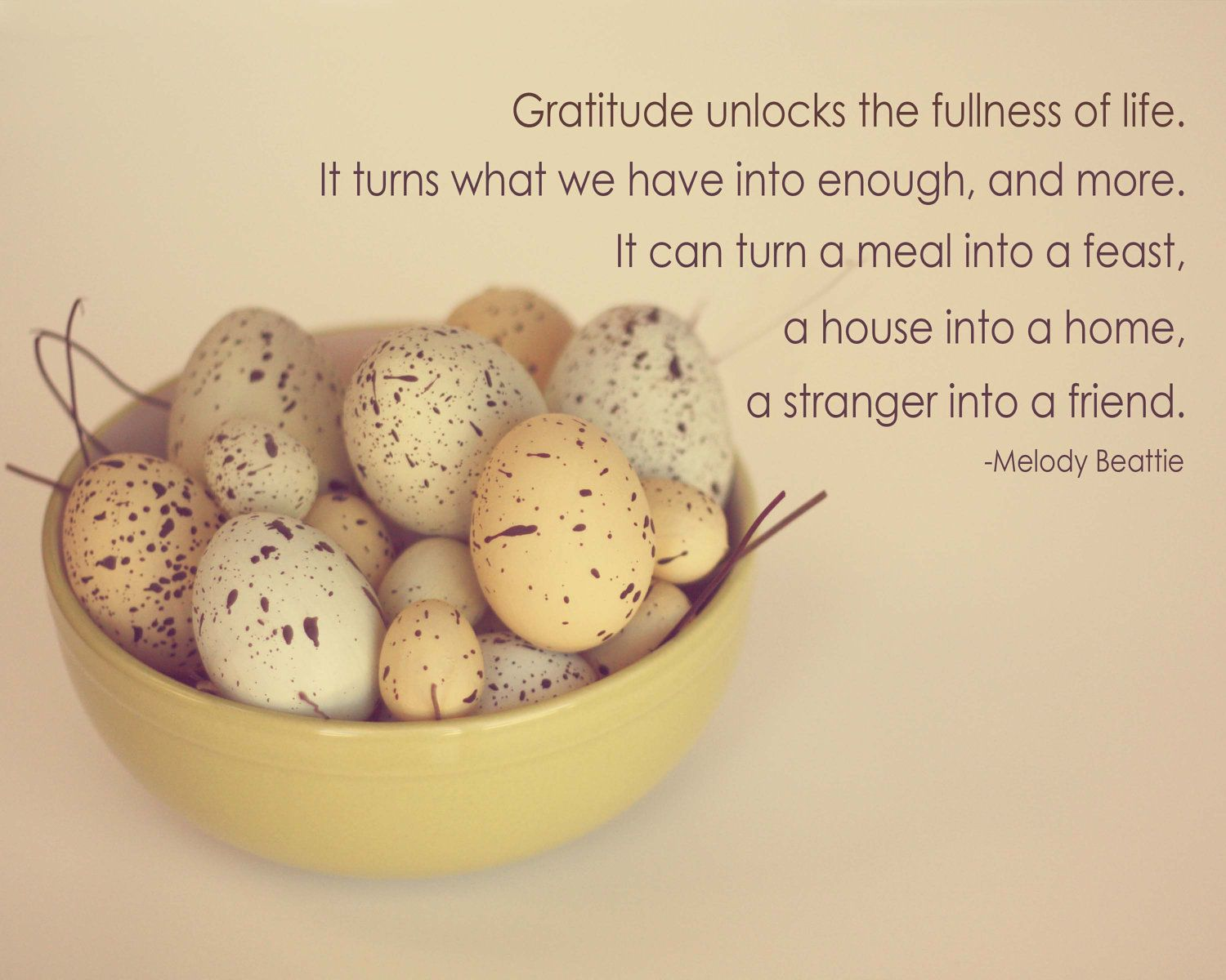 eggs, nature, quote, words, 8 x 10 photograph, home decor, kitchen ...