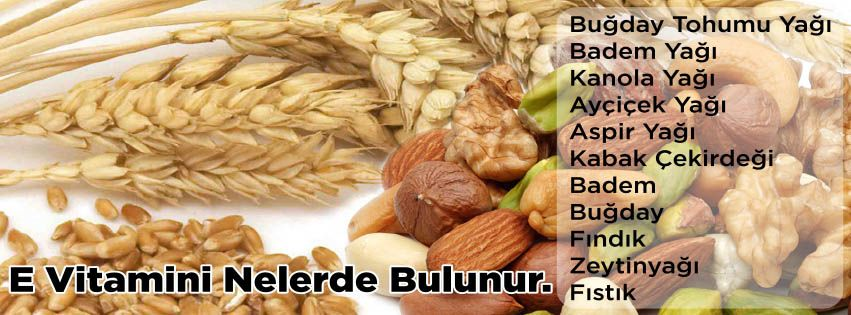 E vitamini nelerde bulunur
