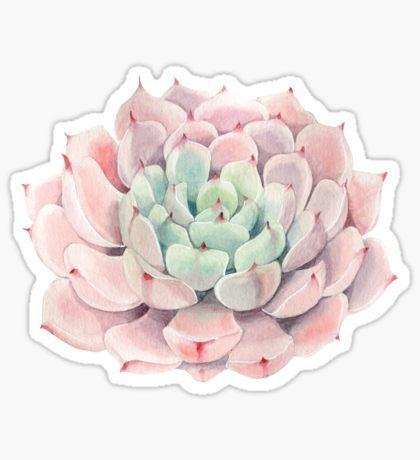 SouthPrints Shop | Succulent stickers, Print stickers ...