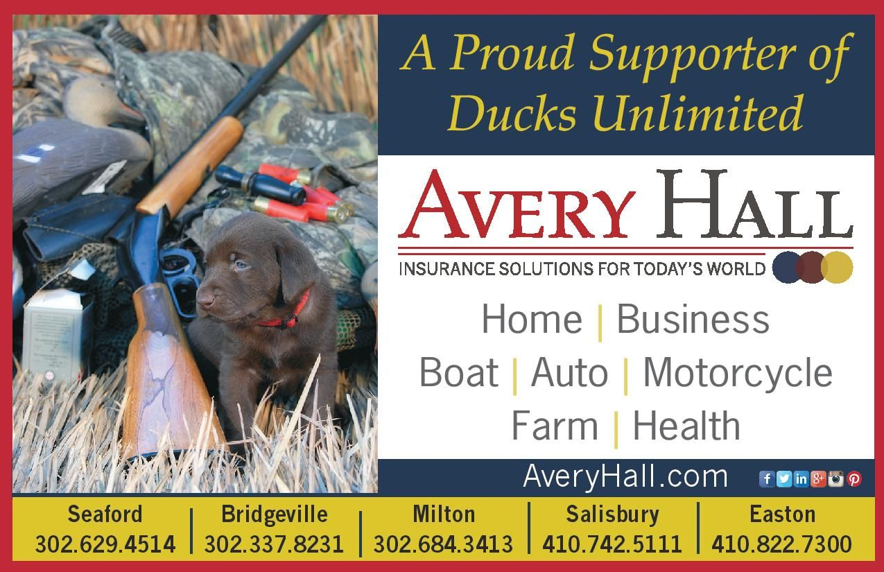 Pin by Karen on Hunting | Shop insurance, Group insurance ...