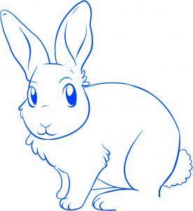 Häufig comment dessiner un lapin - etape 5 | chambre bébé | Pinterest  HF19