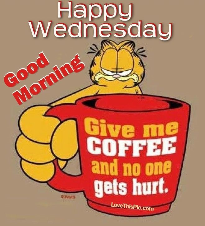 Garfield Good Morning Happy Wednesday Funny Good Morning Quotes Happy Monday Quotes Garfield Quotes