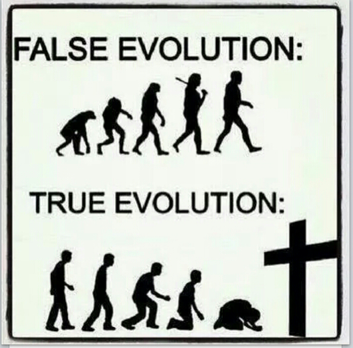Creationism Vs Luciferianism: Image Result For True Evolution