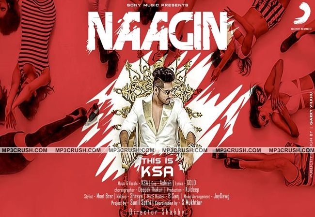 Naagin Karan Singh Arora Mp3 Lyrics Video Song Naagin (KSA