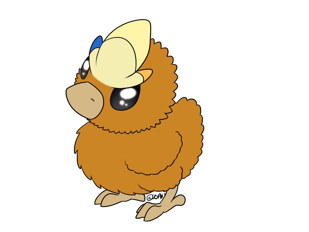 14++ Pokemon chicken info