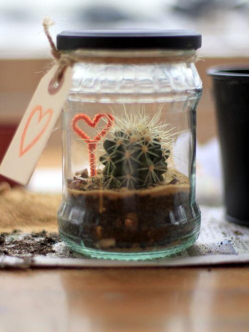 A Recycled Terrarium Crafty Things Terrarium Diy Cactus