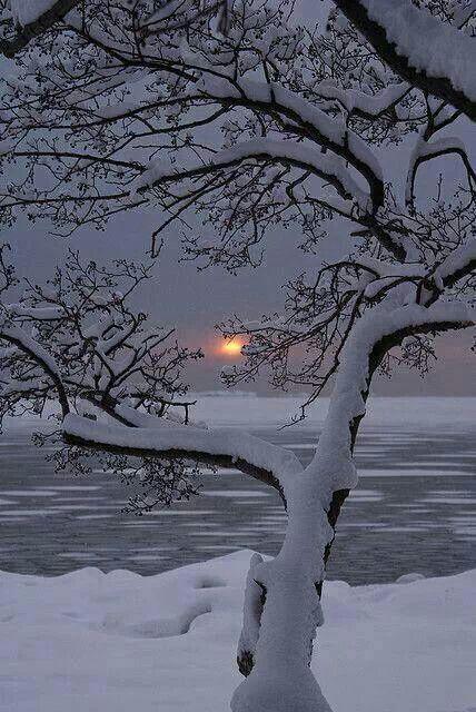 Majestic photo of a winter sunset