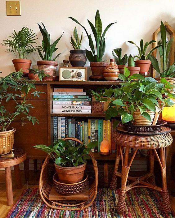 Living Room Decorideas Cozy: Boho Plant Decor Home #cake