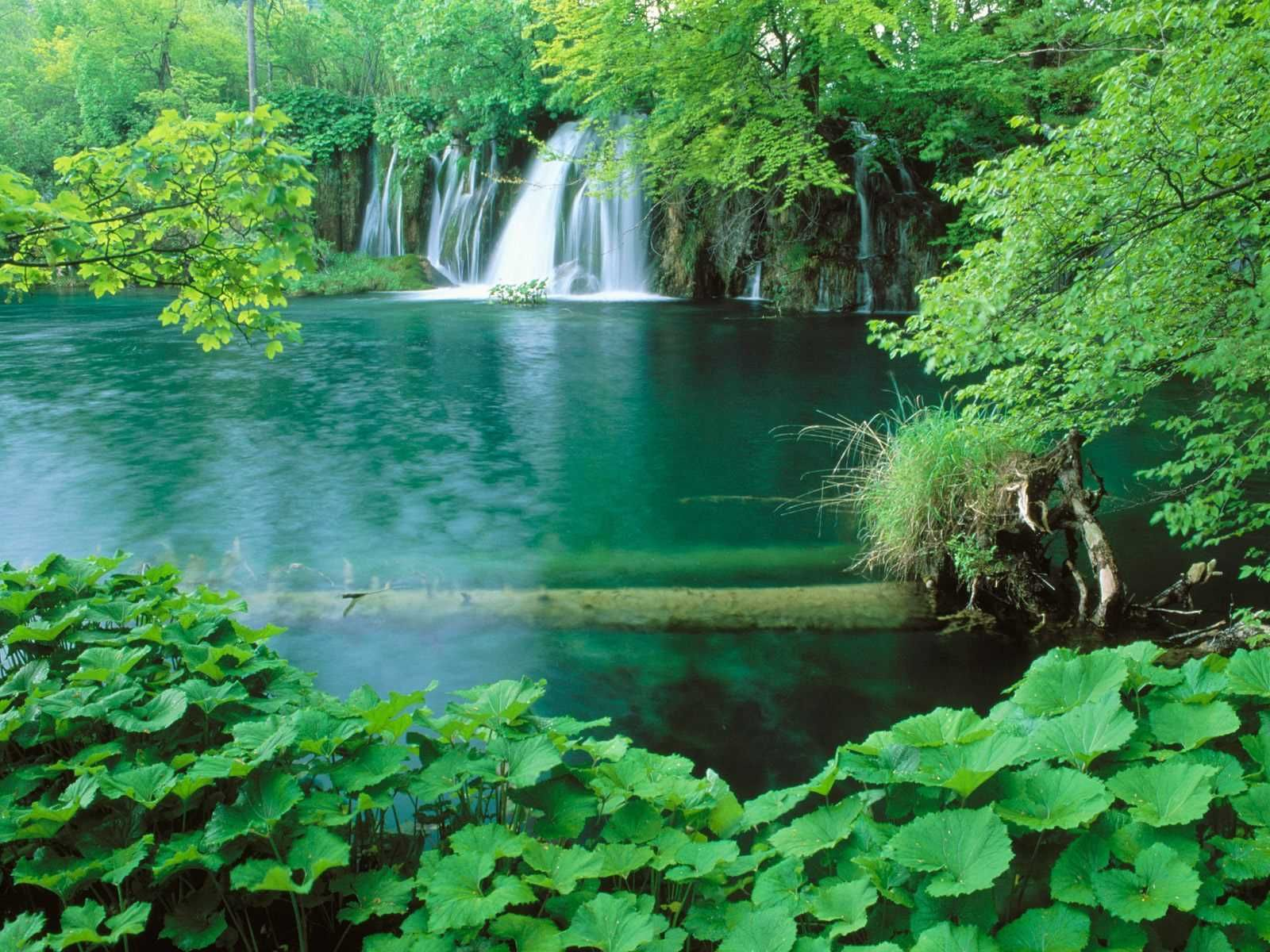 Nature Wallpaper Best Desktop Full Hd Natural Scene For High Resolution Beautiful Nature Scenes Plitvice Lakes National Park Plitvice Lakes