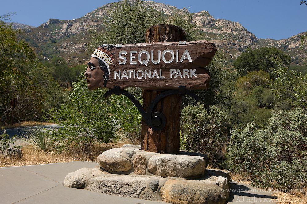 SequoiaNationalParkCalifornia America Pinterest Sequoia - National parks california