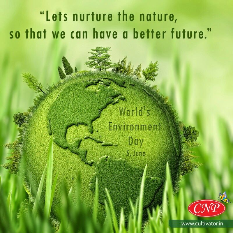 Our Environment is Heritage And Our Legacy That We All Have Inherited . Let's Vow Today With CNP On WORLD ENVIRONMENT DAY To Protect Our Mother Nature #swasthrahomastraho #worldenvironmentday #BlueGreenShapat #healthyenvironmenthealthyyou #plantatree #earth #protect