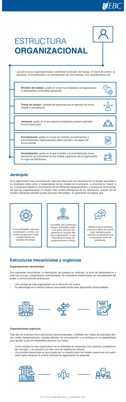 Las Estructuras Organizacionales Manifiestan La División Del