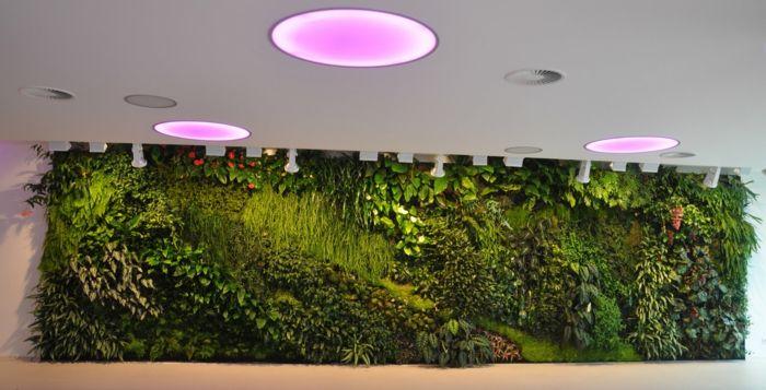gras anbauen indoor ohne lampe eindrucksvolle bild oder edcafdcccedeaa