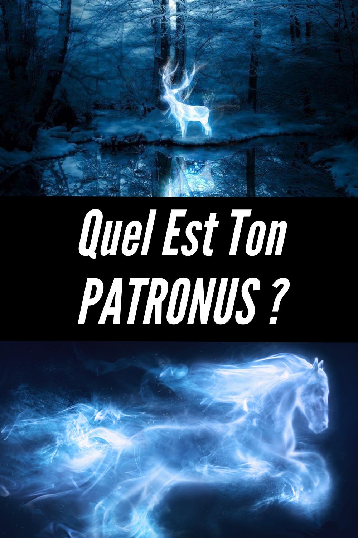 Test Quel Est Ton Patronus : patronus, Épinglé, Harry, Potter