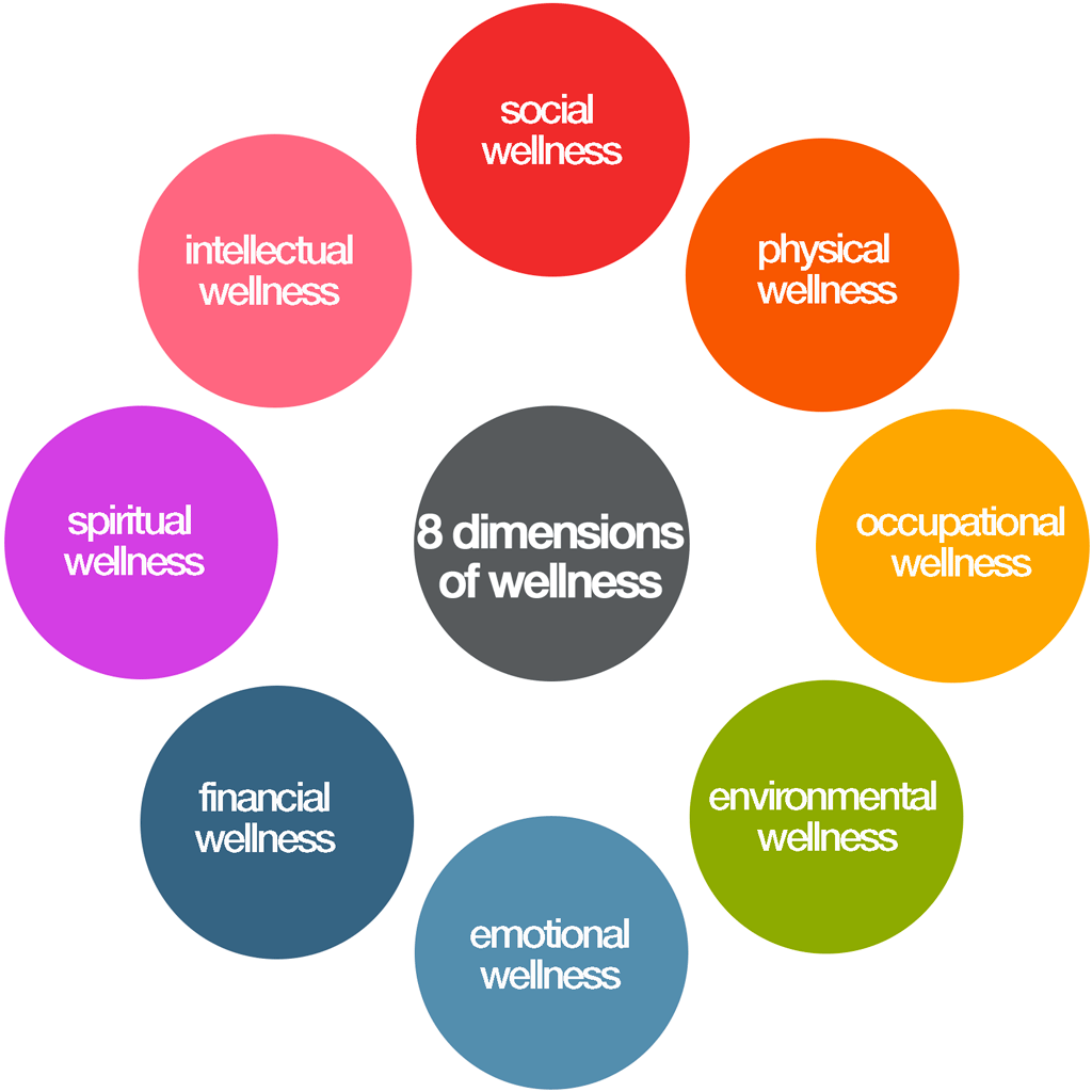 Eco Fashion Dictionary Human Wellness Eight Dimensions