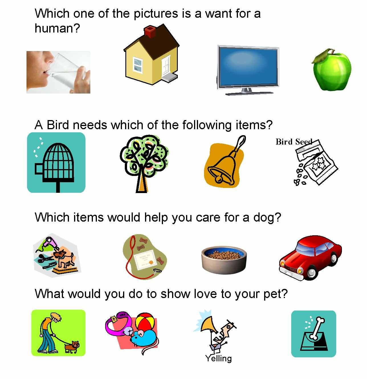 pet care amp safety lesson plans homeschool pets
