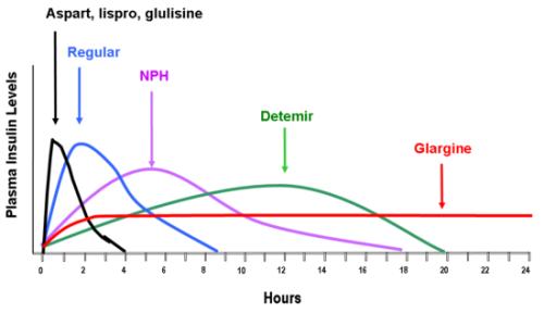 insulin peak time chart: Insulin review aspart acts fast onset 5 15mins peak 45min