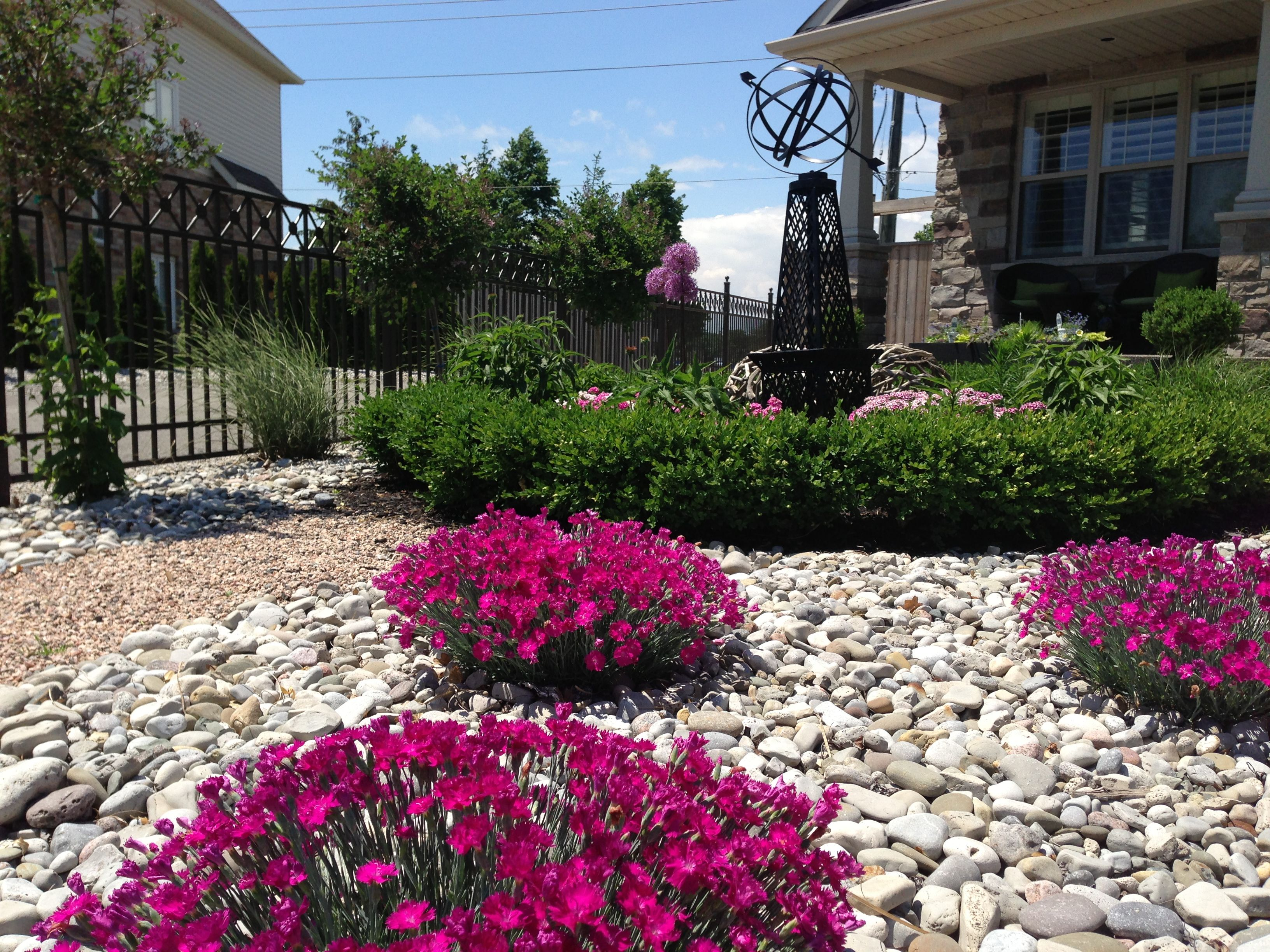 Ideas For My Front Yard Part - 24: My Front Garden. No Grass On This Front Lawn!