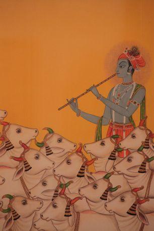 Studio Kishangarh, Jodhpur