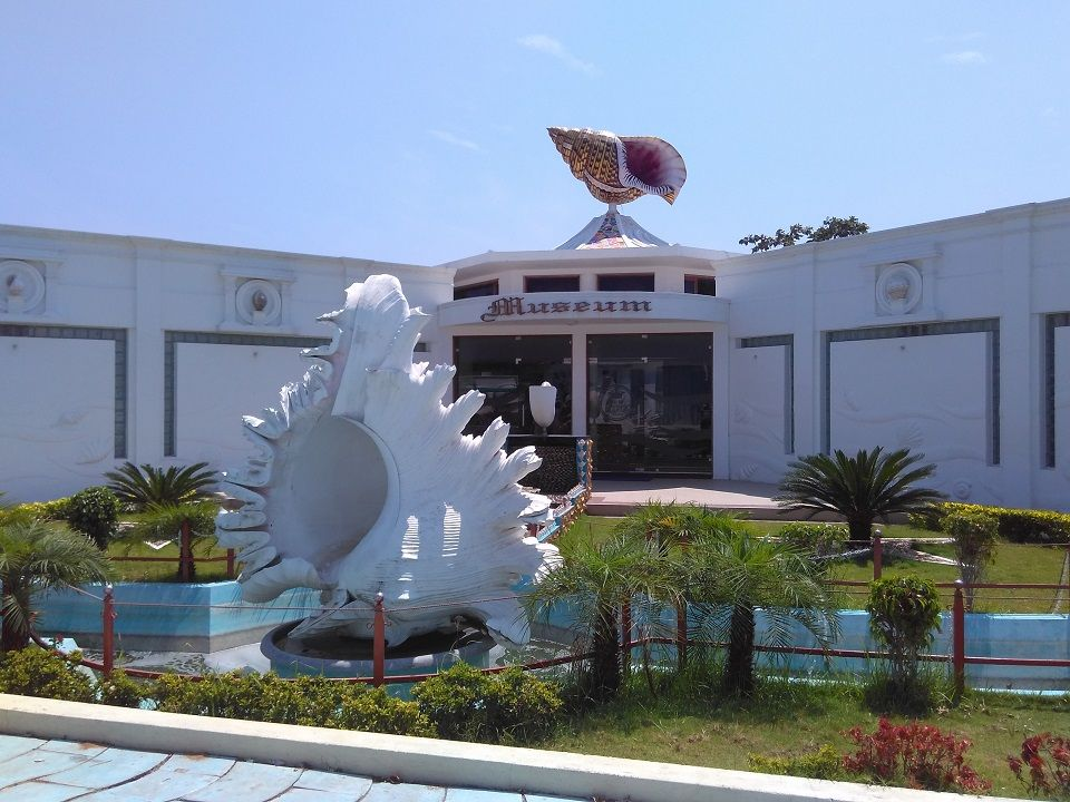 India Seashell Museum & Aquarium @ Mahabalipuram, Chennai