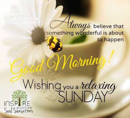 Good Morning And Happy Sunday Quotes : Good morning wishing you a relaxing sunday happy