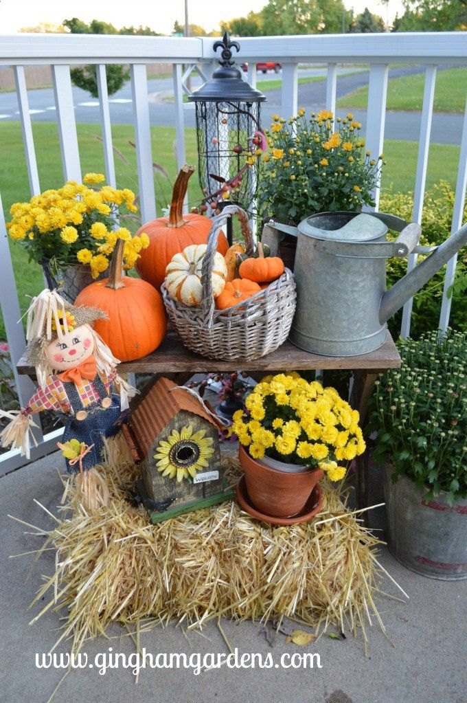 Fall Porch Decor and Other Gardening News images