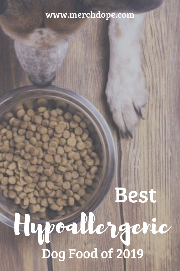 Best Hypoallergenic Dog Food of 2020 Dog food recipes