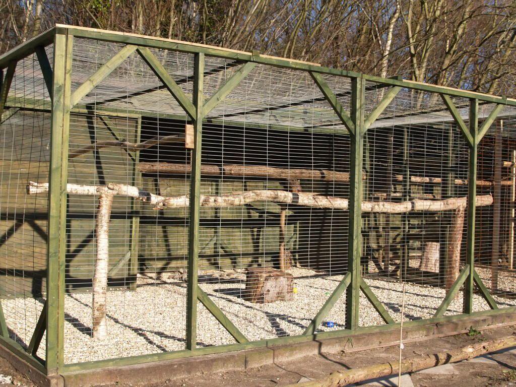 Owl Aviaries Falconry Forum Iff Bird Aviary Aviary Bird Houses