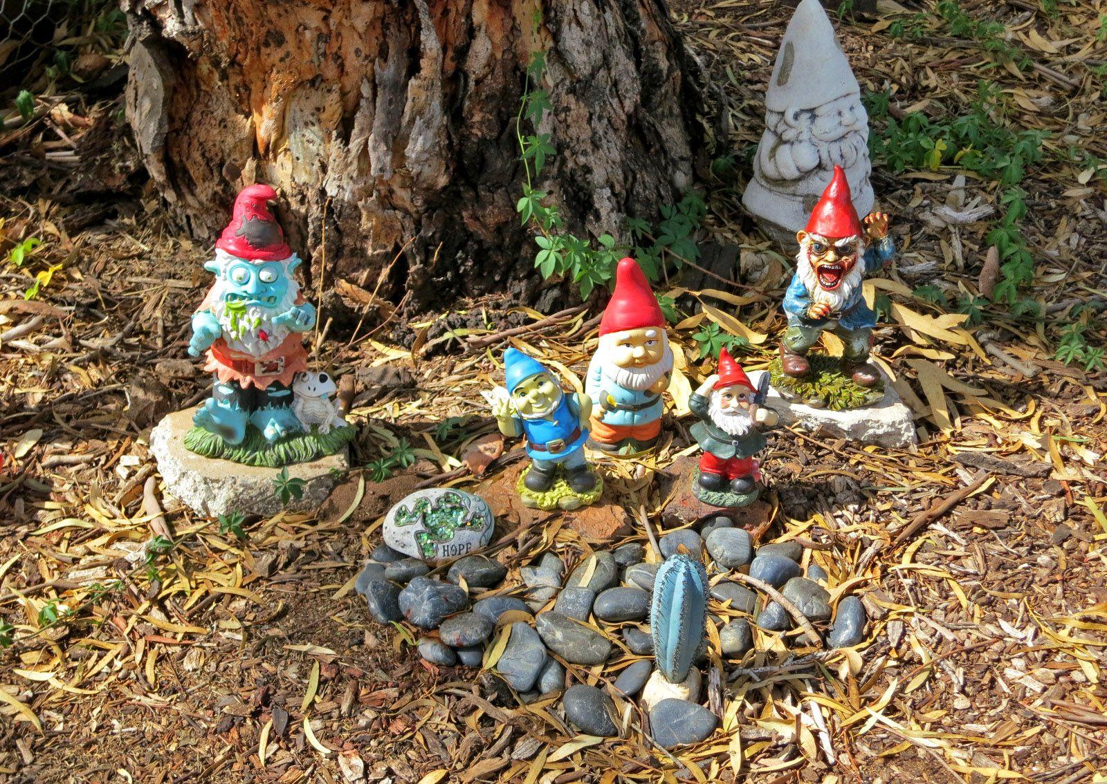 Zombie gnomes! | Our Naked Australia | Fairies & gnomes | Pinterest ...