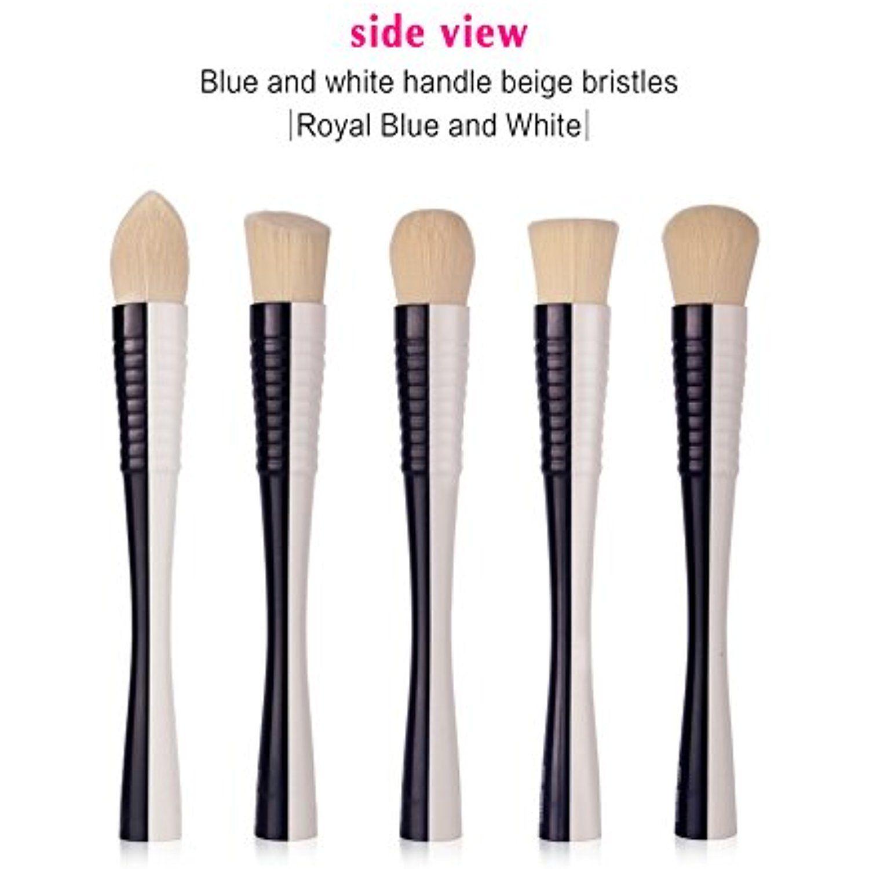 JaneDream 5PCS Makeup Brushes Set Professional Tapered