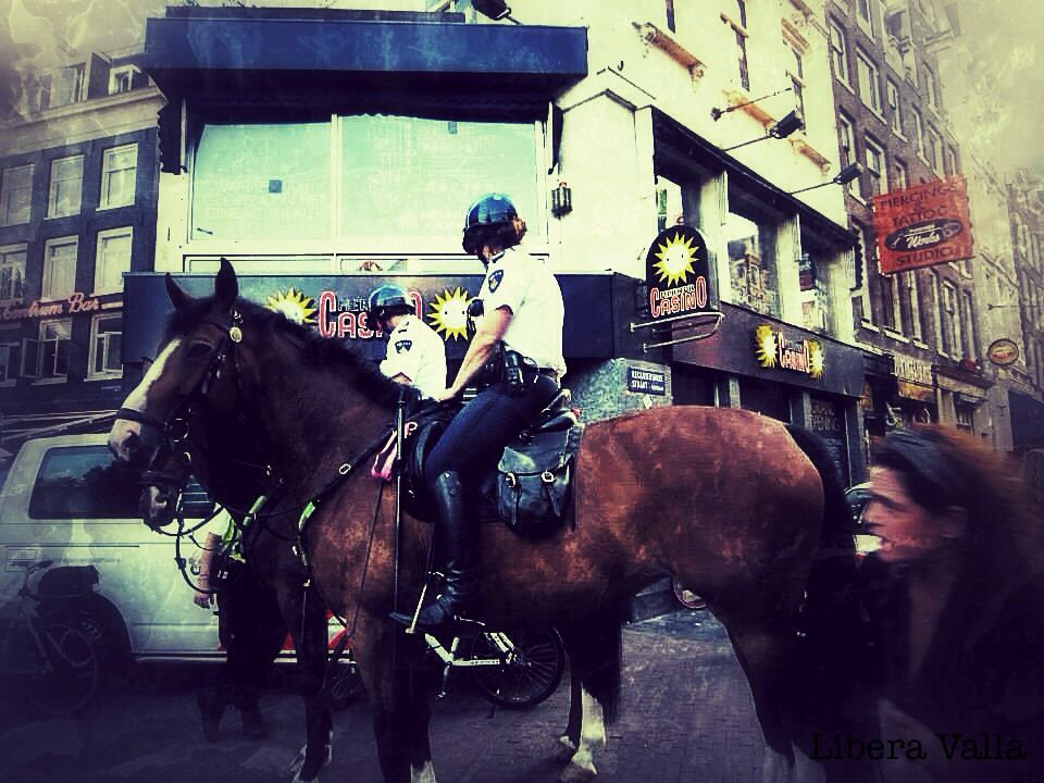 Amsterdam- police on horse