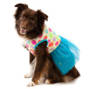Bret Michaels Pets Rock Paint Dot Dress Dresses Petsmart
