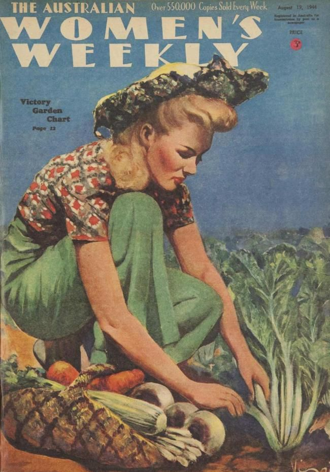 The Victory Garden In Australia Wwii And My Own Attempt Victory Garden Vintage Magazines Vintage Illustration