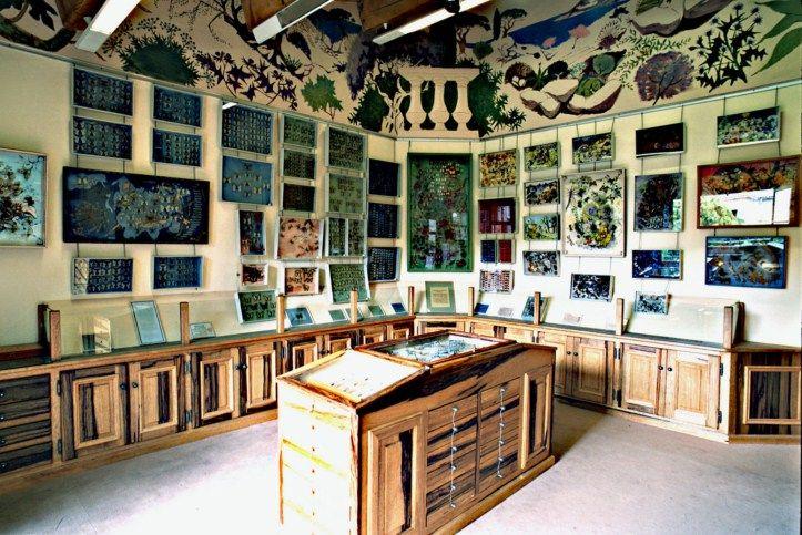 Maison des papillons saint tropez butterfly museum for Ancienne maison des gardes lourmarin france