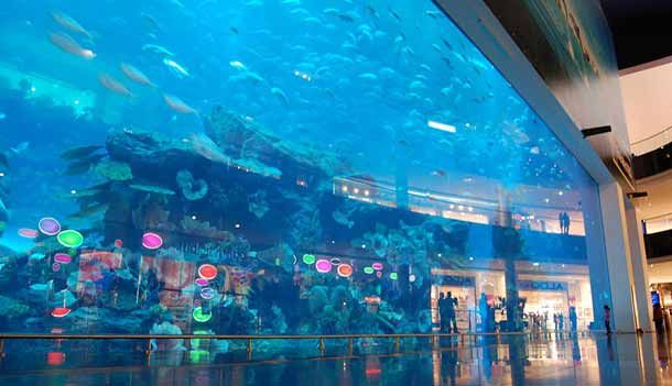 10 Largest Most Extreme All Around Best Aquariums In The