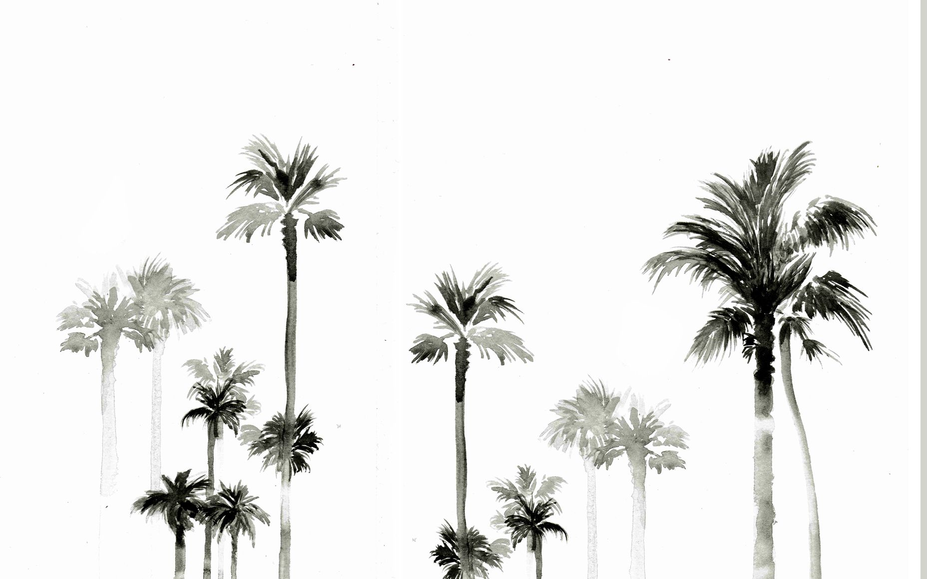 Designlovefest Desktop Wallpaper Palms Summer