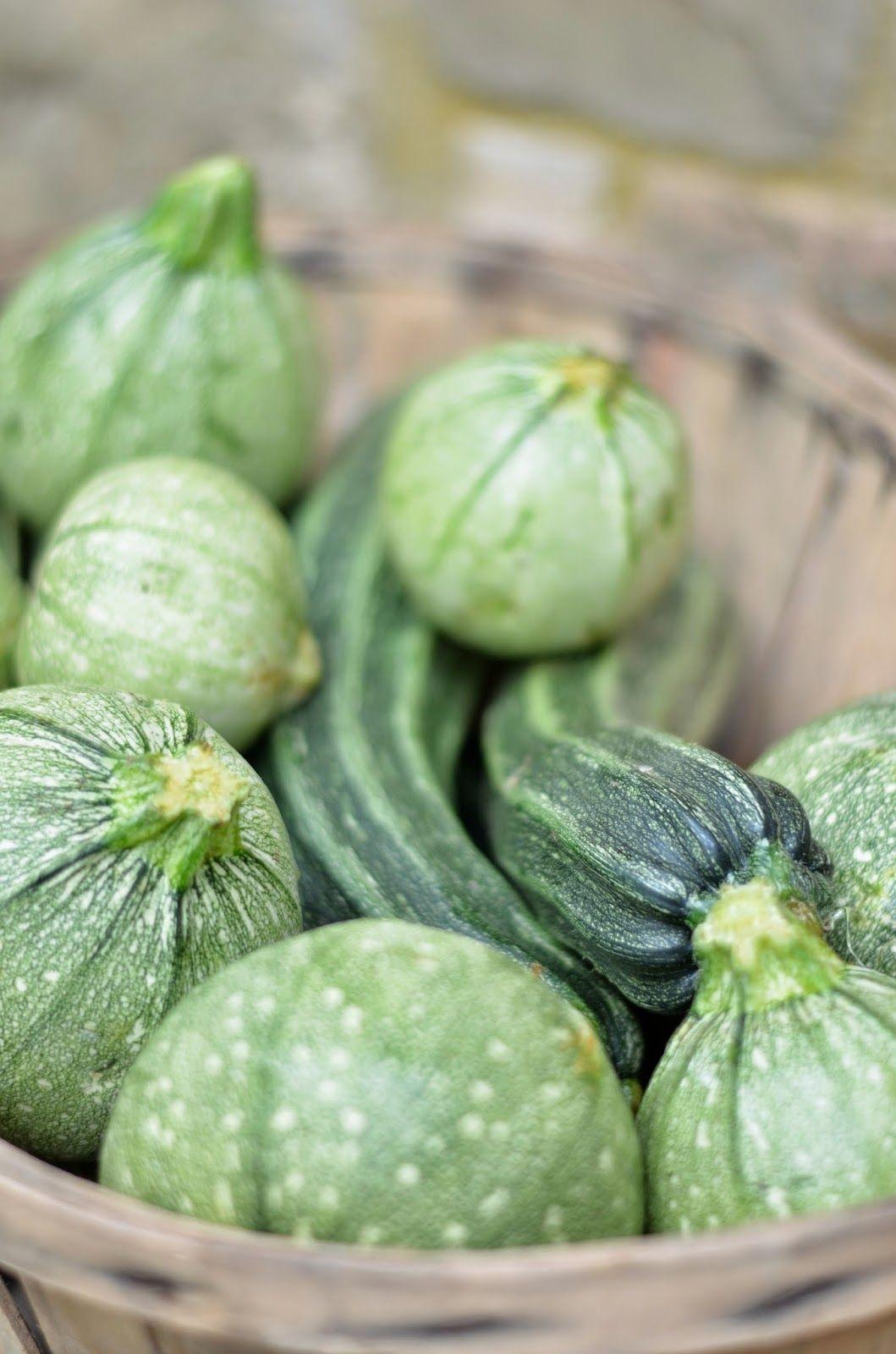 ~ RICETTA: zucchine ripiene ~ Zucchine tonde ripiene alla toscana