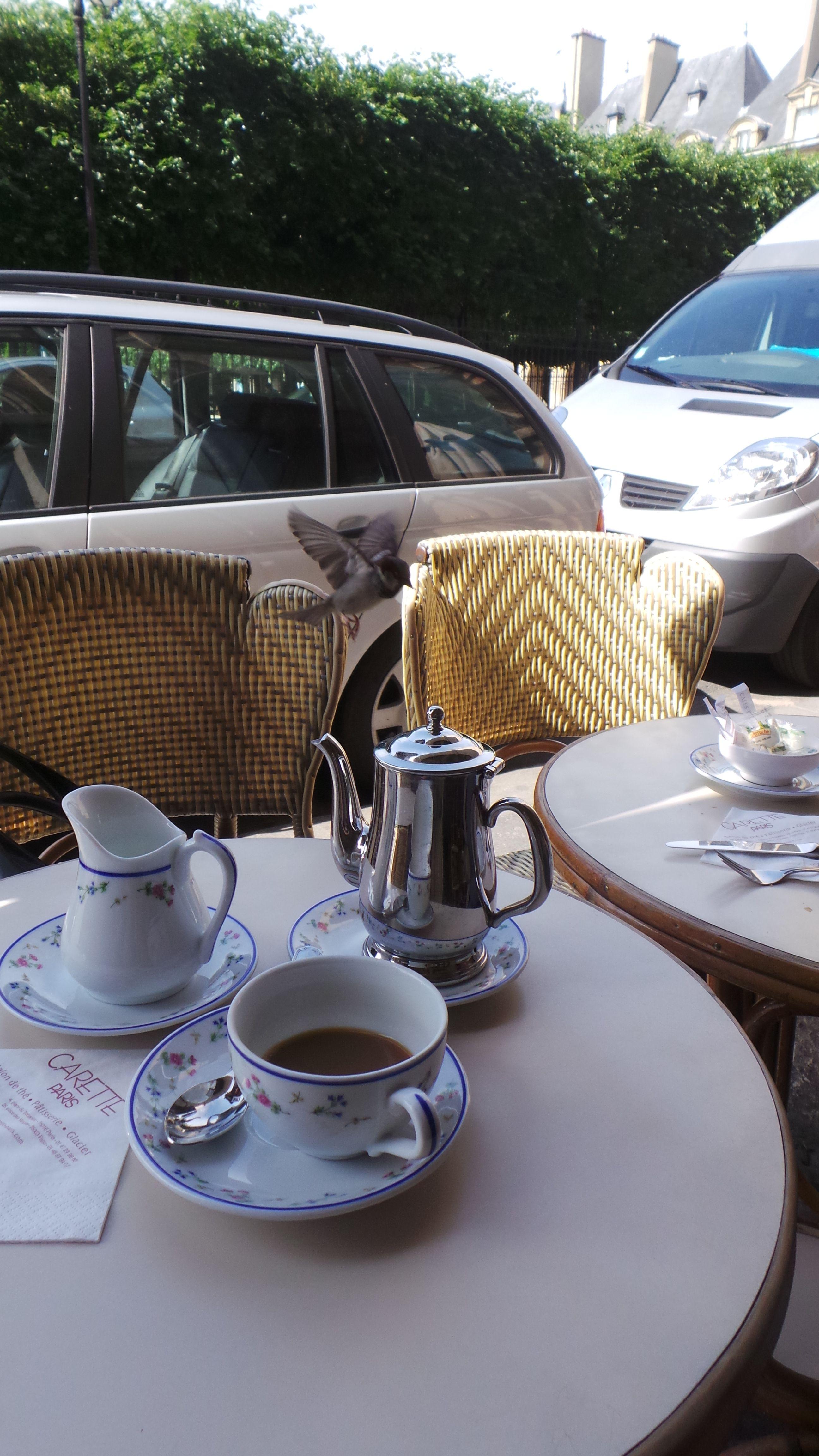 New friend from la Place des Vosges in #Marais by #Delicious_paris