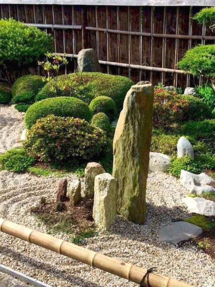 Small Trees For Japanese Garden