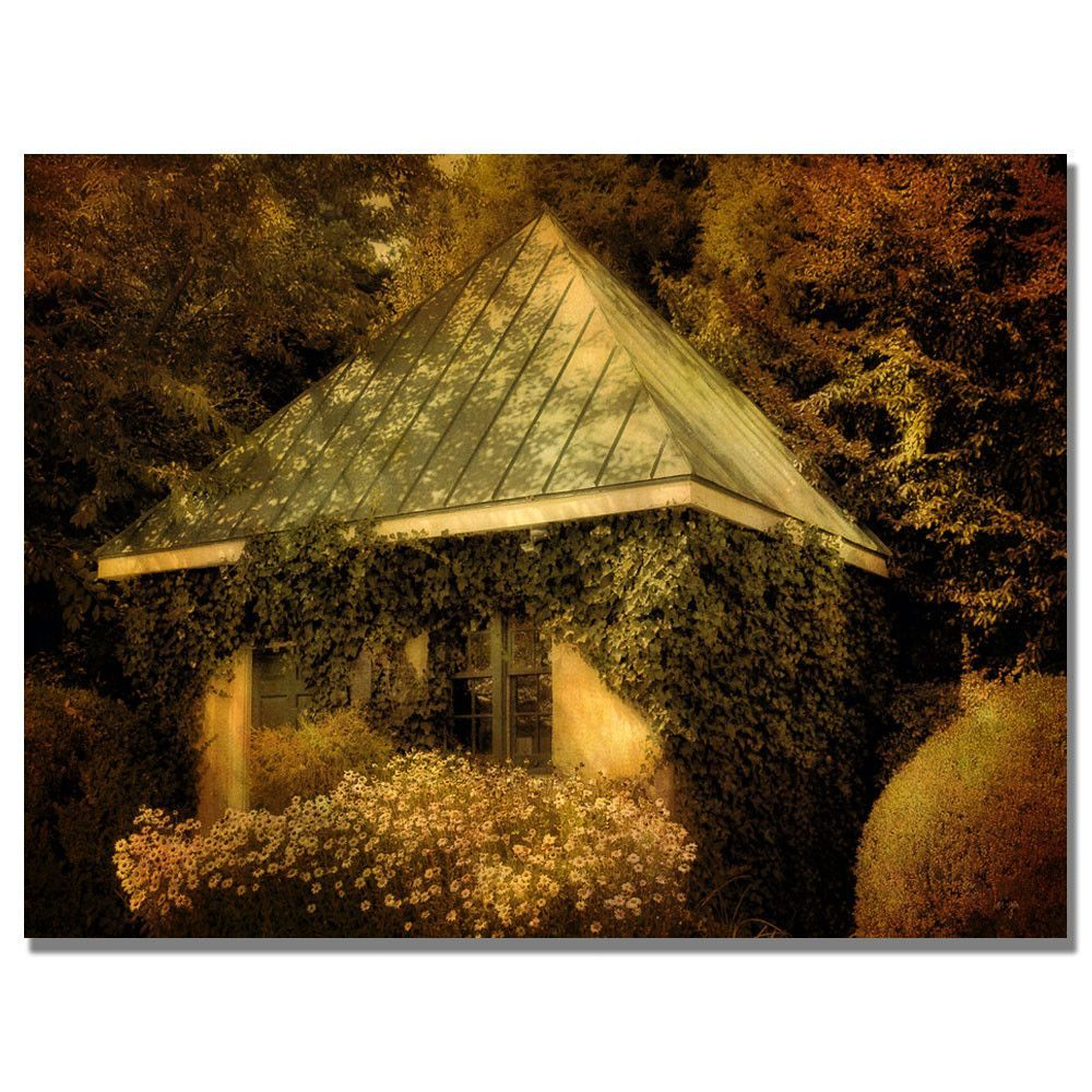 'Forgotten Shed' by Lois Bryan Photographic Print on Canvas