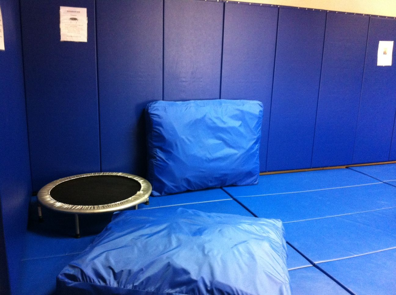 Trampolines And Crash Pads Are Great For Sensory Seekers And The Walls And Floor Are Padded For Safety Gym Pictures Wall Sensory Seeker