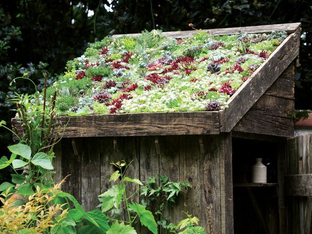 green roofs green roof systems are good for the. Black Bedroom Furniture Sets. Home Design Ideas