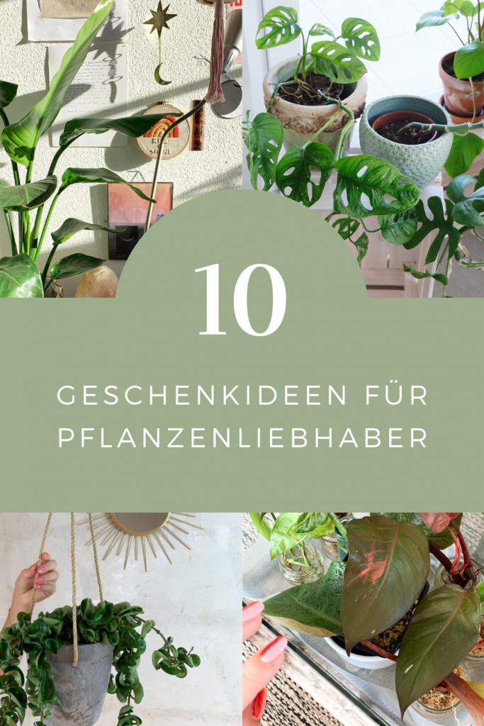 10 Geschenkideen Fur Pflanzenfans Pflanzen Geschenkideen Geschenke