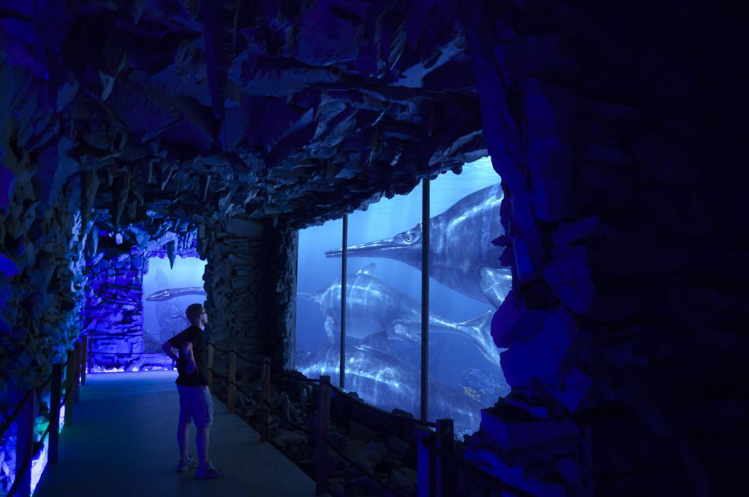 PREHISTORIC OCEANARIUM Going back 200 000 000 years is everybody's and anybody's dream. Fortunately, we were born to make dreams come true. Building the first Prehistoric Oceanarium in the world …
